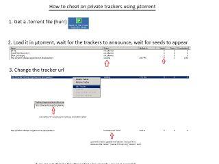 Piracy - info stylee32 net > Piracy